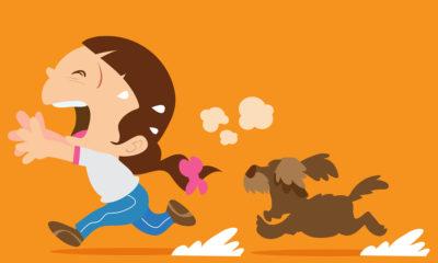 Hundeabwehr beim Joggen