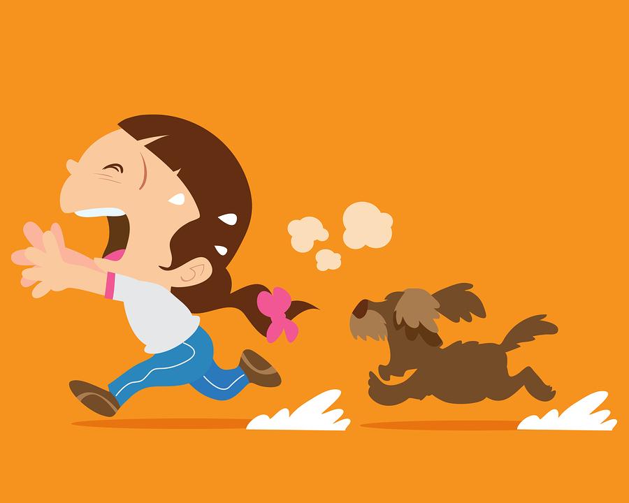 Hund verfolgt Jogger